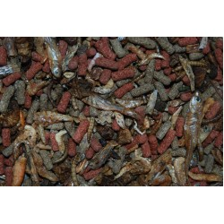 FMR Turtle Terrapin Pellet & Insect Mixes